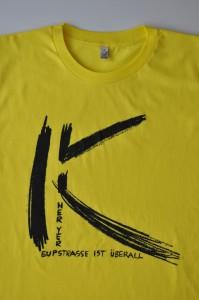 H-gelb:schwarz-DSC_0791